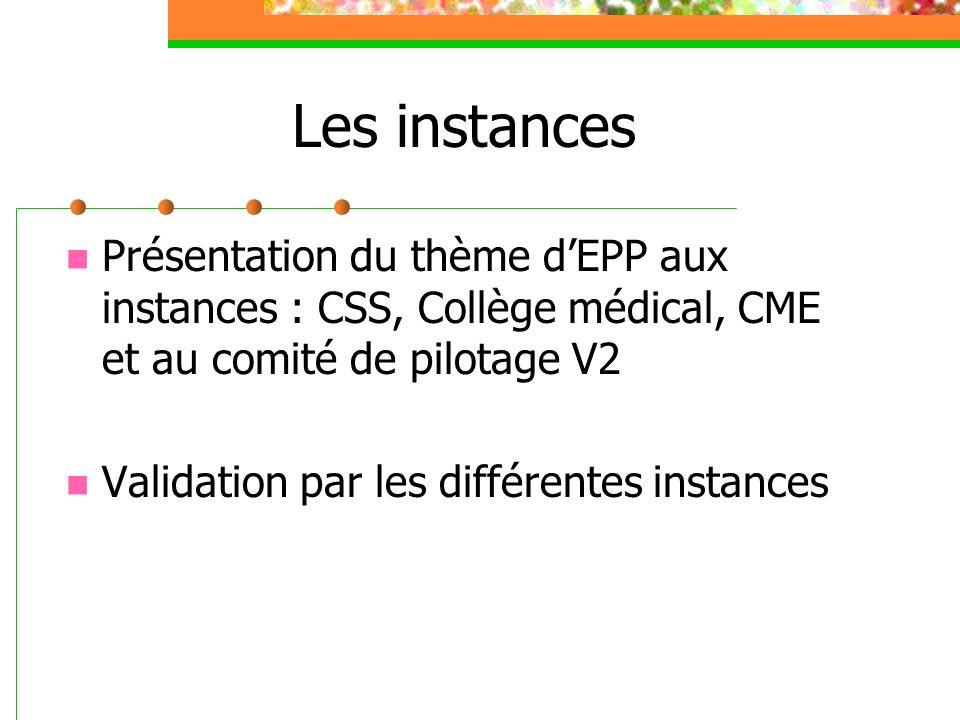 Les instances Présentation du thème dEPP aux instances : CSS, Collège médical, CME et au comité de pilotage V2 Validation par les différentes instances