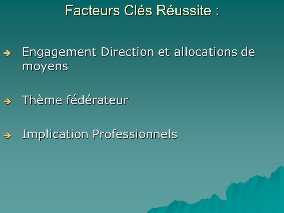 Engagement Direction et allocations de moyens Engagement Direction et allocations de moyens Thème fédérateur Thème fédérateur Implication Professionne