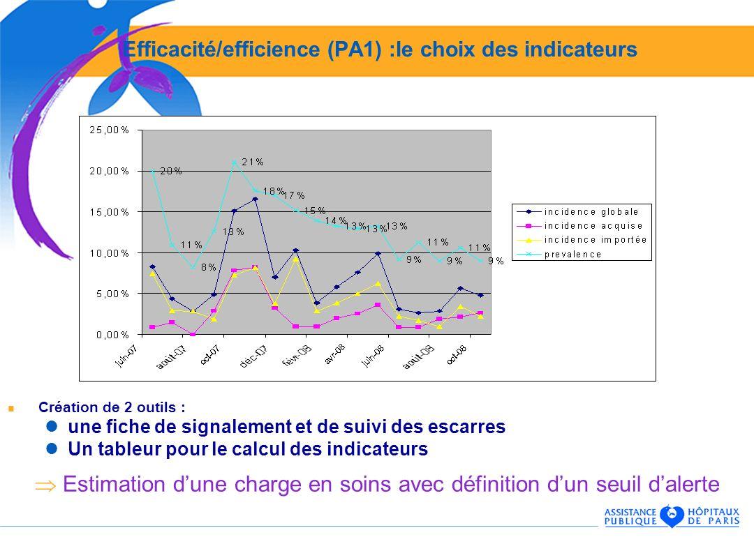 Efficacité/efficience (PA1) :le choix des indicateurs Création de 2 outils : une fiche de signalement et de suivi des escarres Un tableur pour le calcul des indicateurs Estimation dune charge en soins avec définition dun seuil dalerte