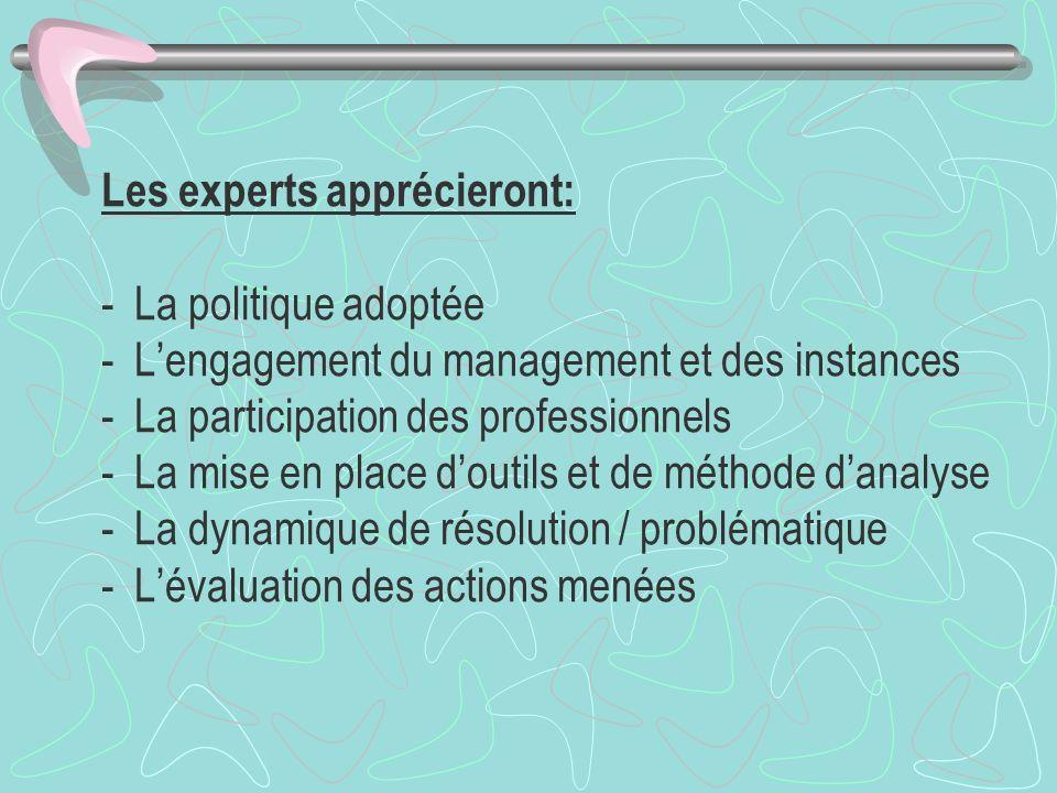 Les experts apprécieront: -La politique adoptée -Lengagement du management et des instances -La participation des professionnels -La mise en place dou