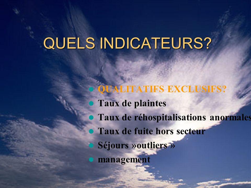 JIQH2008/M VIGUIER QUELS INDICATEURS. QUALITATIFS EXCLUSIFS.