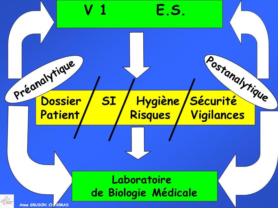 Anne GRUSON CH ARRAS V 1 E.S. Dossier SI Hygiène Sécurité Patient Risques Vigilances Préanalytique Postanalytique Laboratoire de Biologie Médicale
