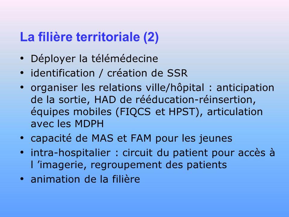 La filière territoriale (2) Déployer la télémédecine identification / création de SSR organiser les relations ville/hôpital : anticipation de la sorti
