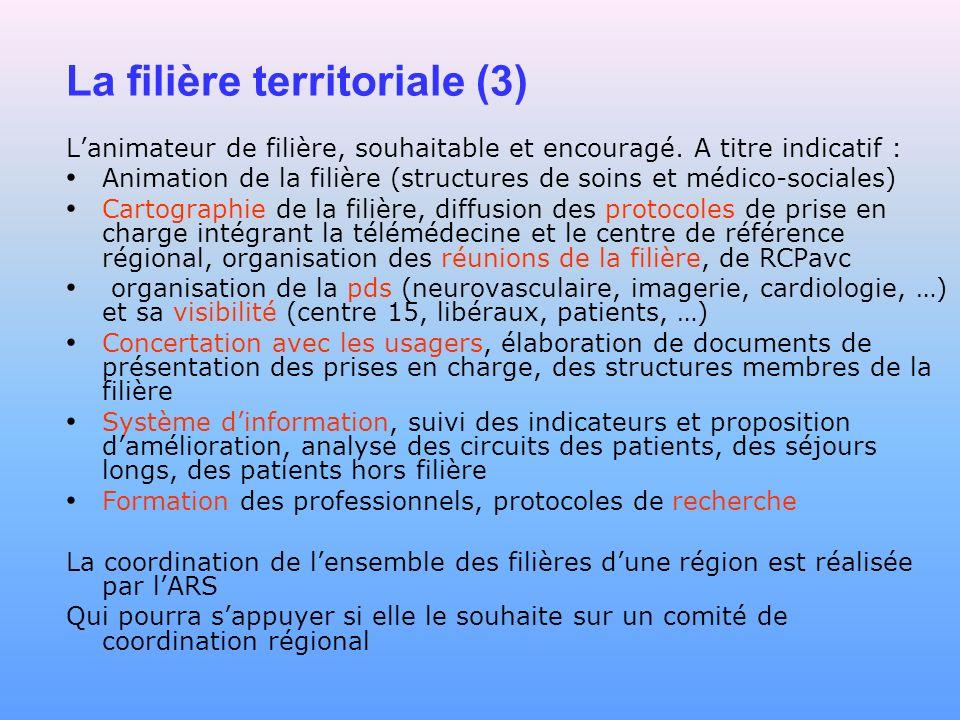 La filière territoriale (3) Lanimateur de filière, souhaitable et encouragé. A titre indicatif : Animation de la filière (structures de soins et médic