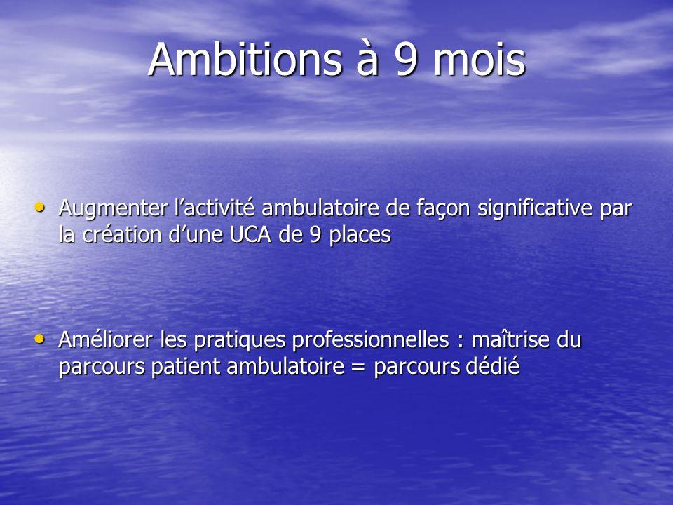 Ambitions à 9 mois Augmenter lactivité ambulatoire de façon significative par la création dune UCA de 9 places Augmenter lactivité ambulatoire de faço
