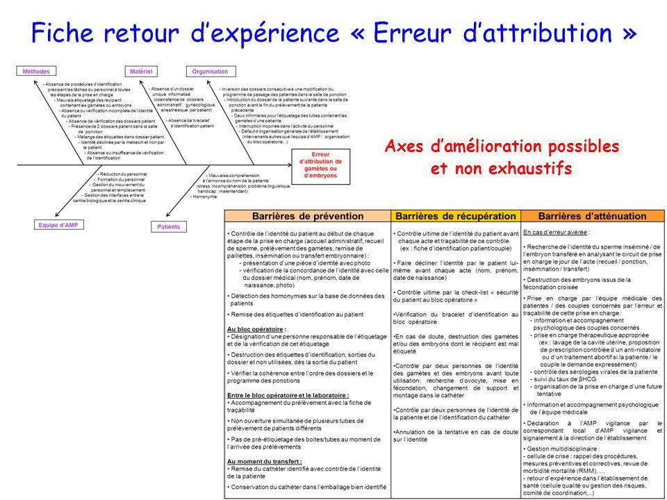Axes damélioration possibles et non exhaustifs Fiche retour dexpérience « Erreur dattribution »