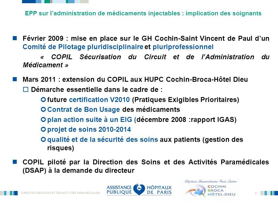 DIRECTION DES SOINS ET DES ACTIVITES PARAMEDICALES 2 Février 2009 : mise en place sur le GH Cochin-Saint Vincent de Paul dun Comité de Pilotage plurid