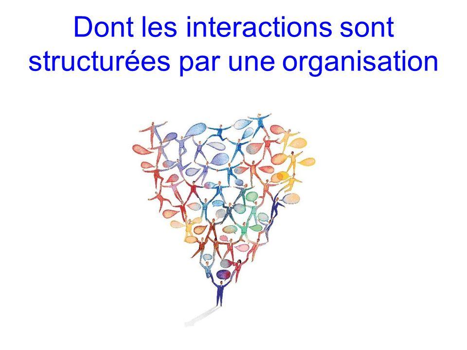 Dont les interactions sont structurées par une organisation