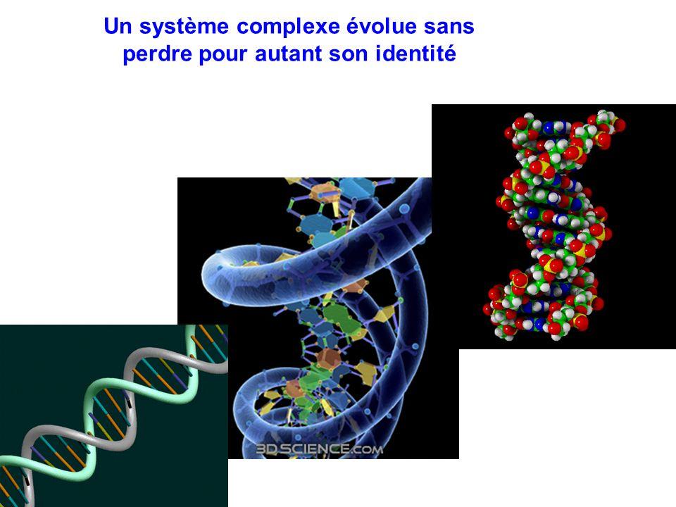 Systèmes physiques Systèmes chimiques Systèmes vivants Systèmes humains Systèmes artificiels Systèmes sociaux Systèmes symboliques Daprès M.BUNGE: ordre supposé dapparition des systèmes dans le temps … et de complexité croissante .