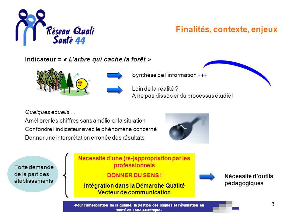 «Pour lamélioration de la qualité, la gestion des risques et lévaluation en santé en Loire Atlantique» 3 Indicateur = « Larbre qui cache la forêt » Sy