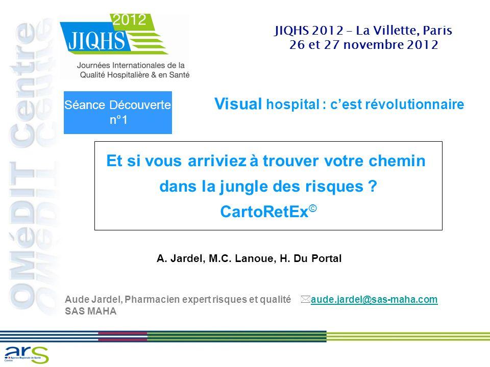 JIQHS 2012 – La Villette, Paris 26 et 27 novembre 2012 Visual hospital : cest révolutionnaire Et si vous arriviez à trouver votre chemin dans la jungl