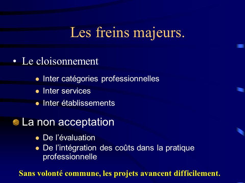 Les freins majeurs. Le cloisonnement Inter établissements Inter services Inter catégories professionnelles La non acceptation De lévaluation De lintég
