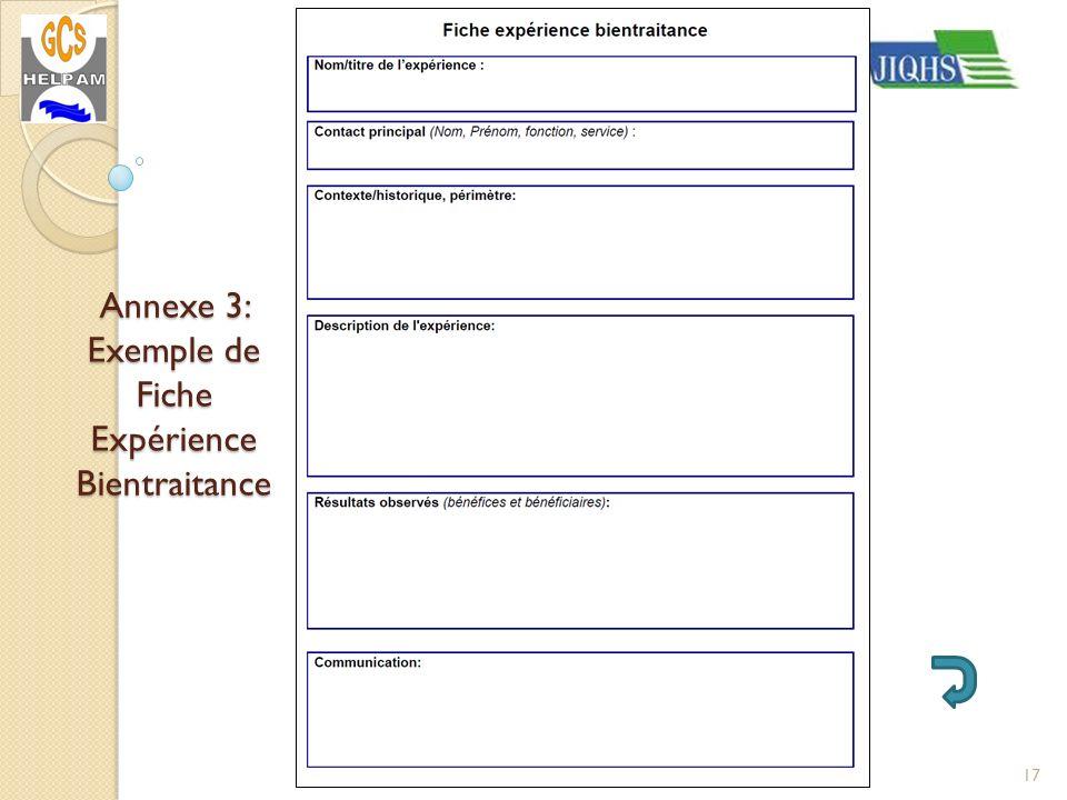 Annexe 3: Exemple de Fiche Expérience Bientraitance 17JIQHS Paris La Villette