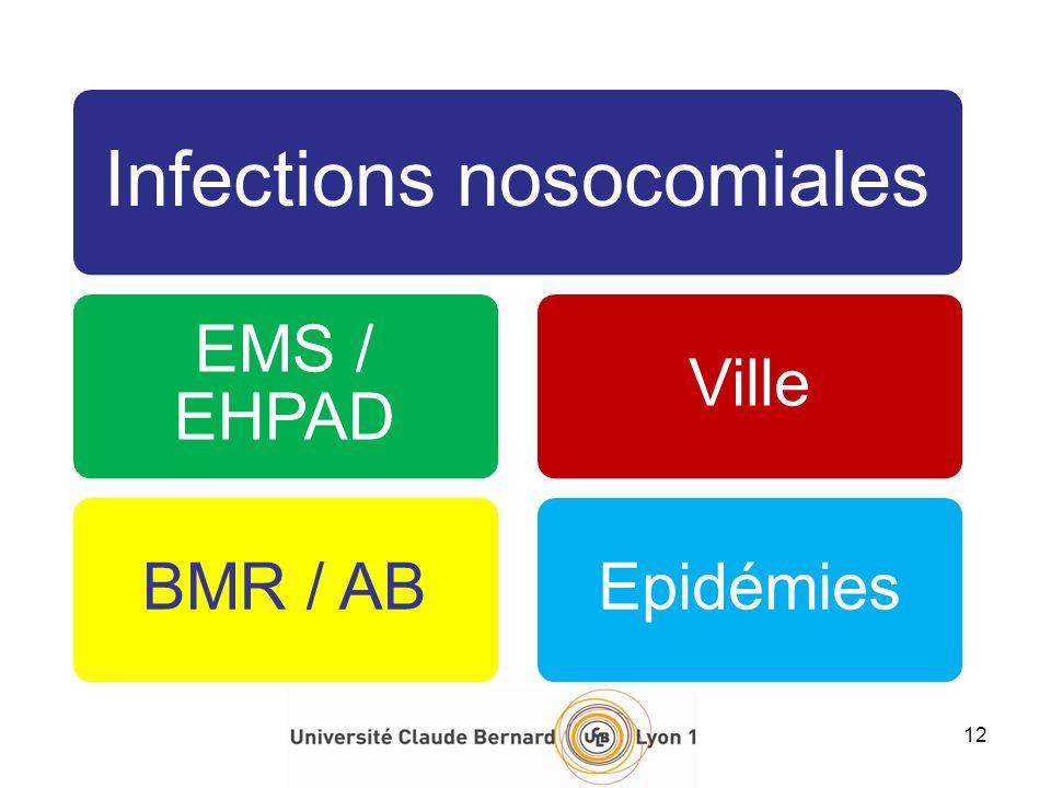 12 Infections nosocomiales EMS / EHPAD BMR / AB Ville Epidémies