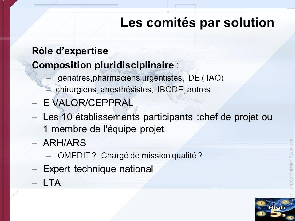 © Copyright, Joint Commission Resources Les comités par solution Rôle dexpertise Composition pluridisciplinaire : – gériatres,pharmaciens,urgentistes,