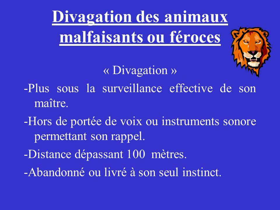 Divagation des animaux malfaisants ou féroces « Divagation » -Plus sous la surveillance effective de son maître. -Hors de portée de voix ou instrument