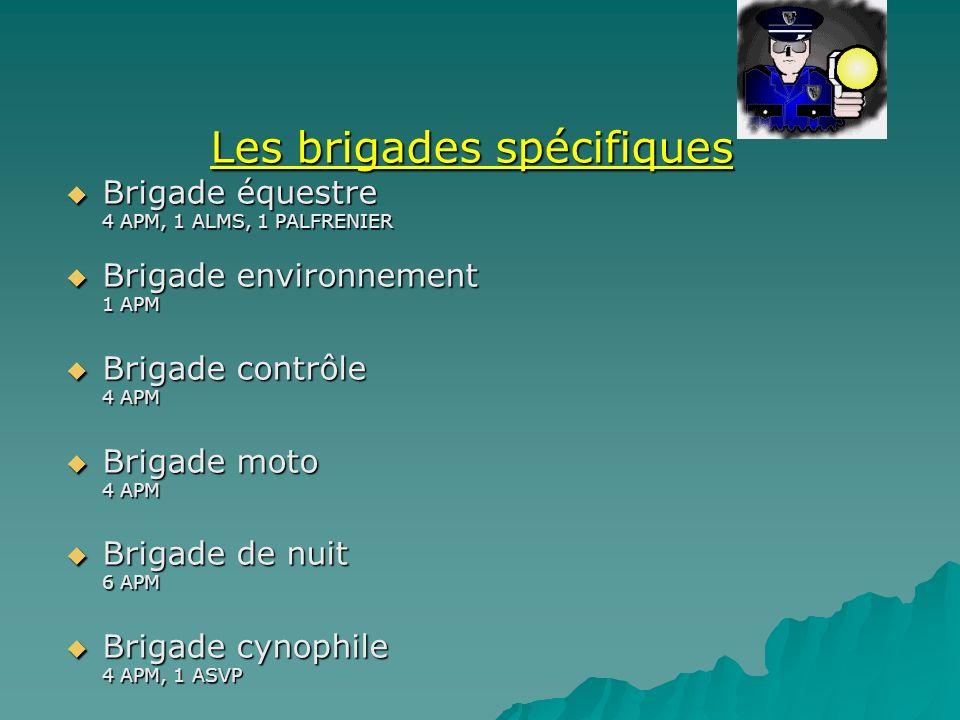 Les brigades spécifiques Brigade équestre 4 APM, 1 ALMS, 1 PALFRENIER Brigade environnement 1 APM Brigade contrôle 4 APM Brigade moto 4 APM Brigade de