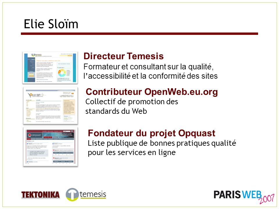 Directeur Temesis Formateur et consultant sur la qualit é, l accessibilit é et la conformit é des sites Contributeur OpenWeb.eu.org Collectif de promo