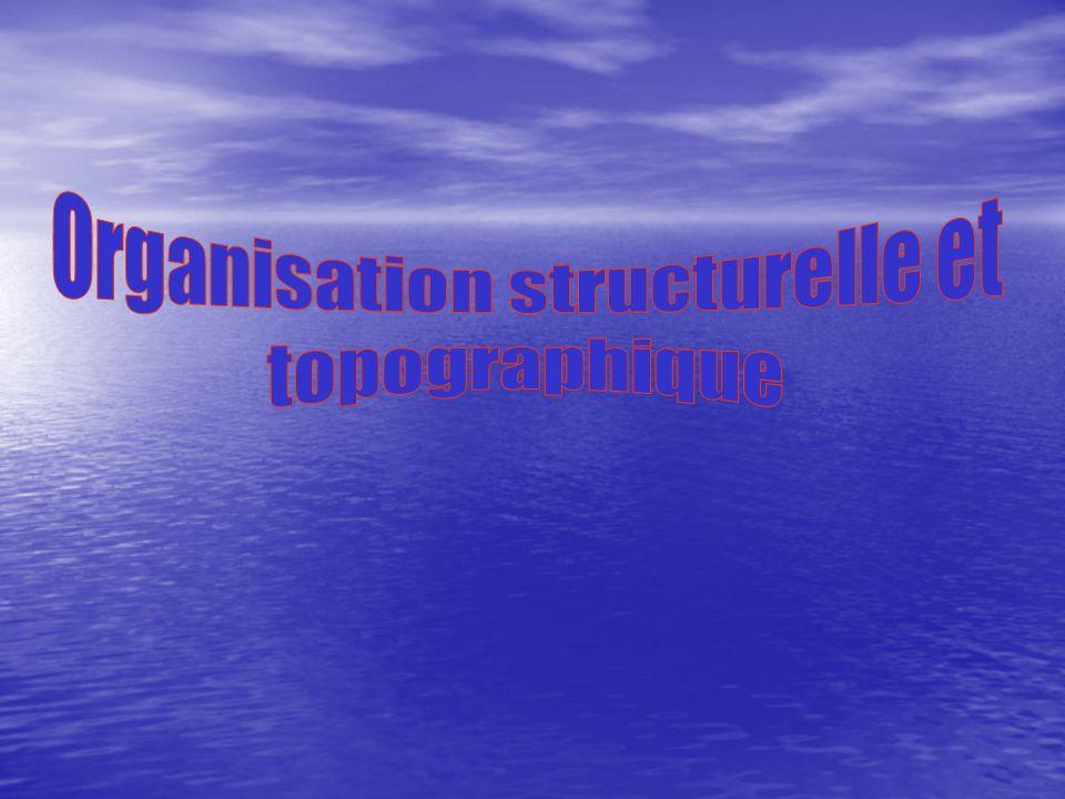 La sous-direction de ladministration et de la modernisation anime la politique de management et assure la gestion des ressources humaines, financières