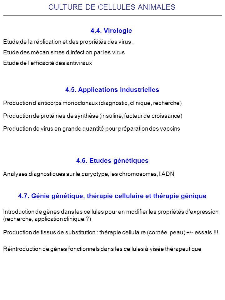 CULTURE DE CELLULES ANIMALES 4.4. Virologie Etude de la réplication et des propriétés des virus. Etude des mécanismes dinfection par les virus Etude d