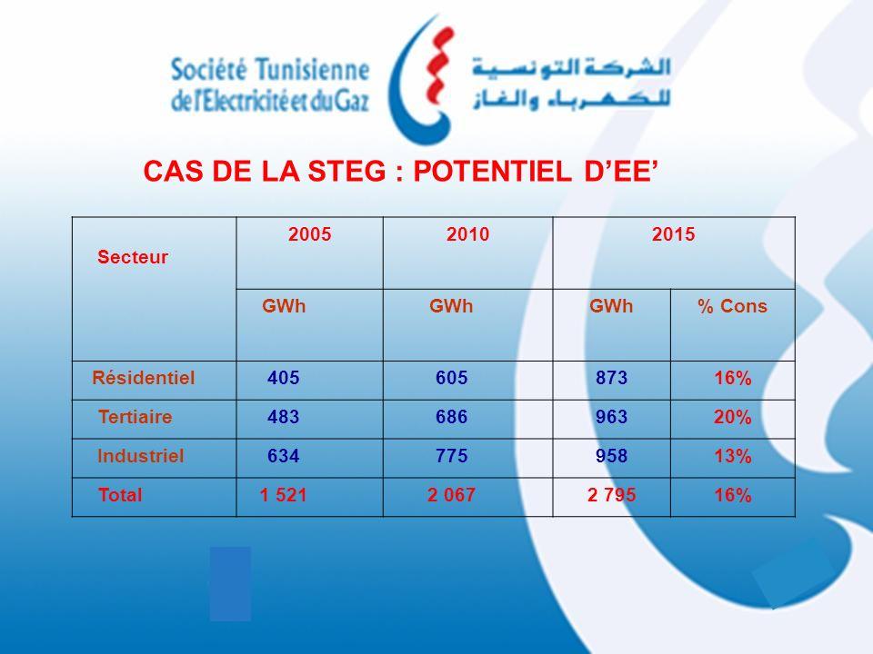 CAS DE LA STEG : POTENTIEL DEE Secteur 200520102015 GWh % Cons Résidentiel40560587316% Tertiaire48368696320% Industriel63477595813% Total1 5212 0672 7