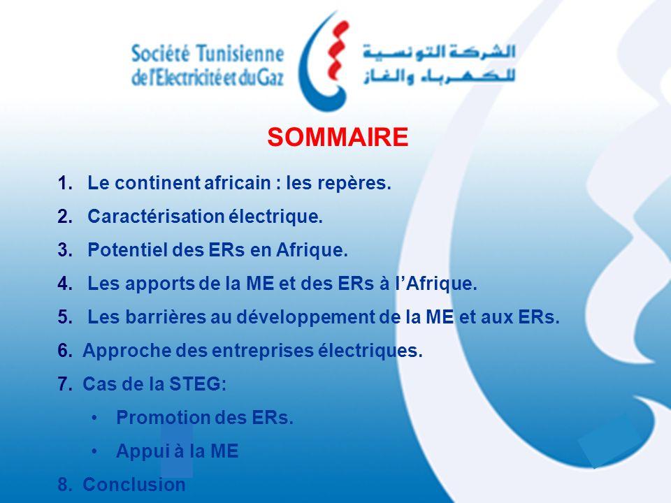 SOMMAIRE 1. Le continent africain : les repères. 2. Caractérisation électrique. 3. Potentiel des ERs en Afrique. 4. Les apports de la ME et des ERs à