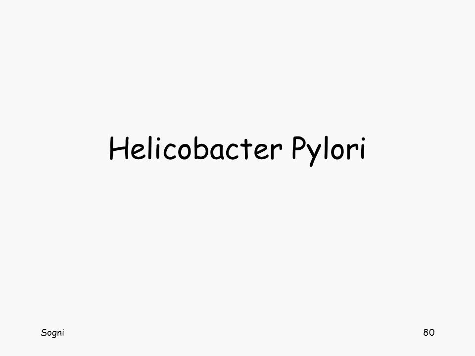 Sogni80 Helicobacter Pylori