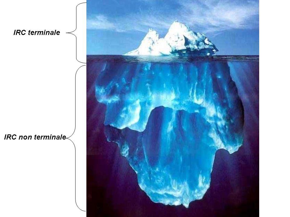 Anémie et IRC Rarement présente avant 30 ml/minRarement présente avant 30 ml/min Toujours rechercher une autre causeToujours rechercher une autre cause Baisse de l EPO (pas de dosage)Baisse de l EPO (pas de dosage) HB réticulocytes, coefficient de saturation de la transferrine, ferritineHB réticulocytes, coefficient de saturation de la transferrine, ferritine