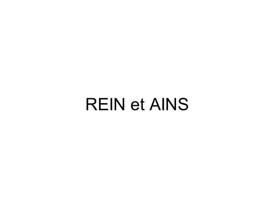 REIN et AINS