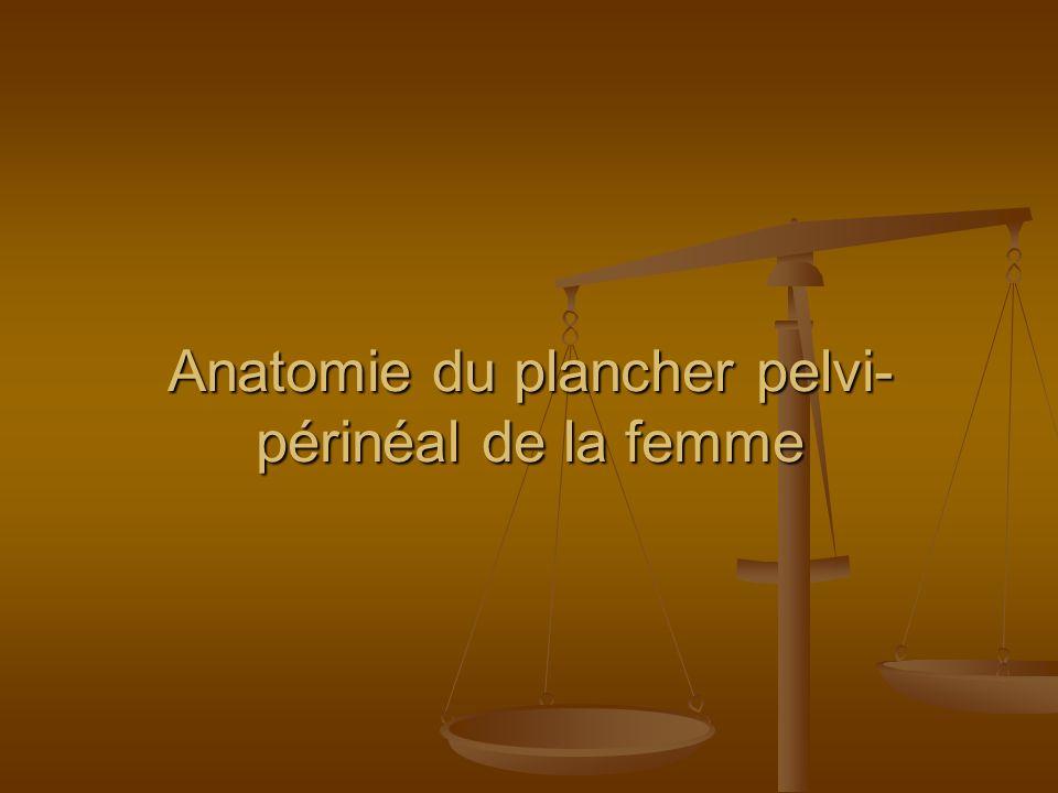 Anatomie du plancher pelvi- périnéal de la femme