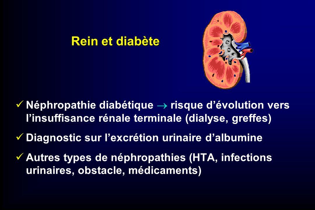 Rein et diabète Néphropathie diabétique risque dévolution vers linsuffisance rénale terminale (dialyse, greffes) Diagnostic sur lexcrétion urinaire da