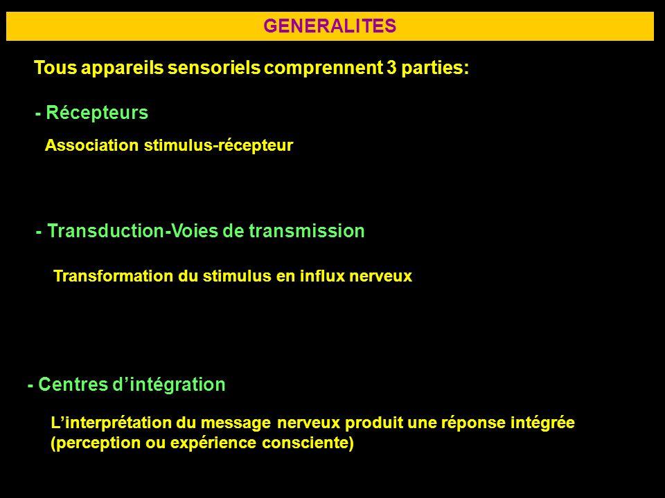 2 GENERALITES Tous appareils sensoriels comprennent 3 parties: - Récepteurs - Transduction-Voies de transmission - Centres dintégration Association st