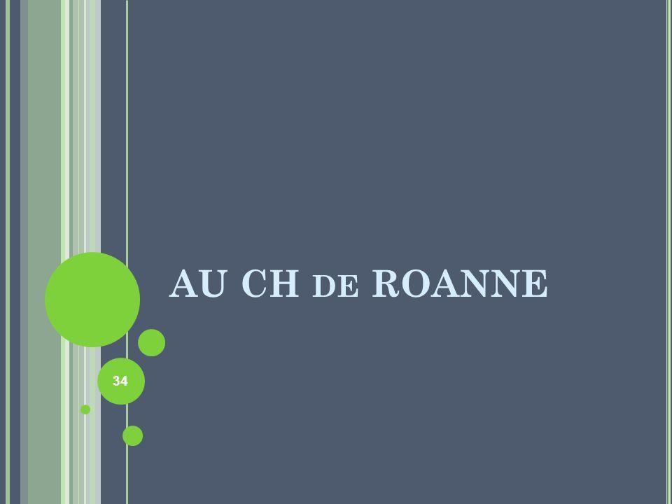AU CH DE ROANNE 34