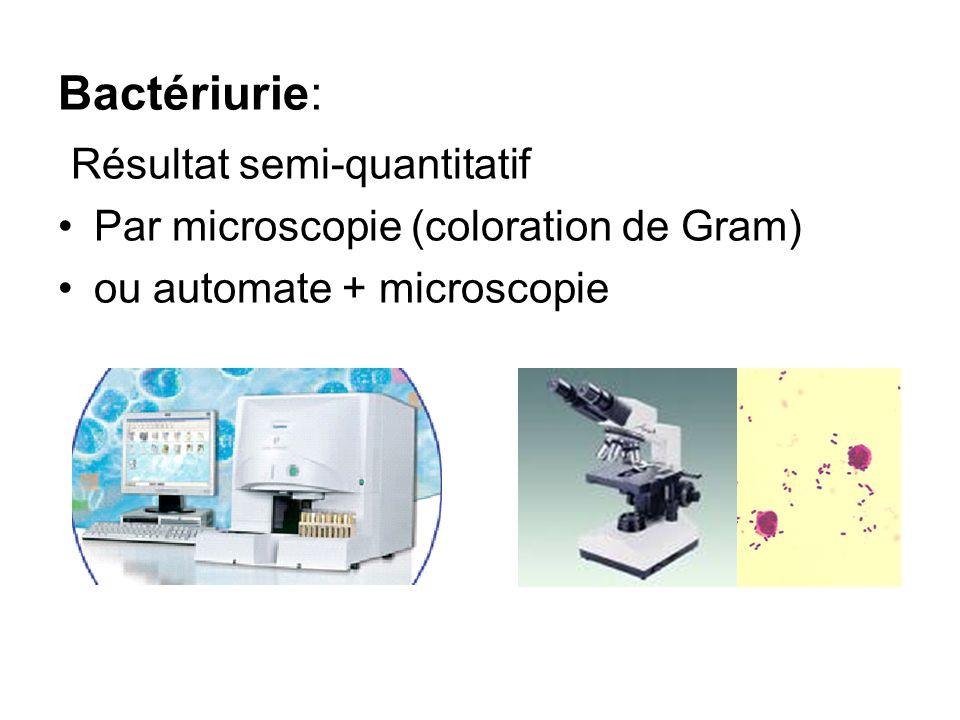 Bactériurie: Résultat semi-quantitatif Par microscopie (coloration de Gram) ou automate + microscopie