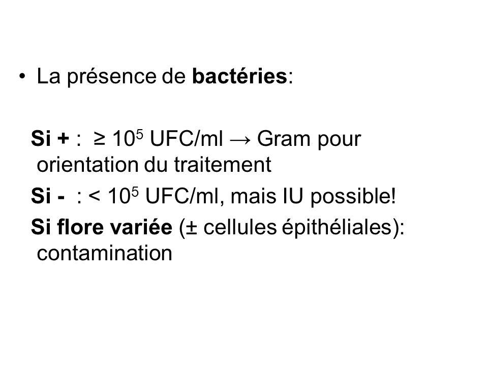 La présence de bactéries: Si + : 10 5 UFC/ml Gram pour orientation du traitement Si - : < 10 5 UFC/ml, mais IU possible! Si flore variée (± cellules é