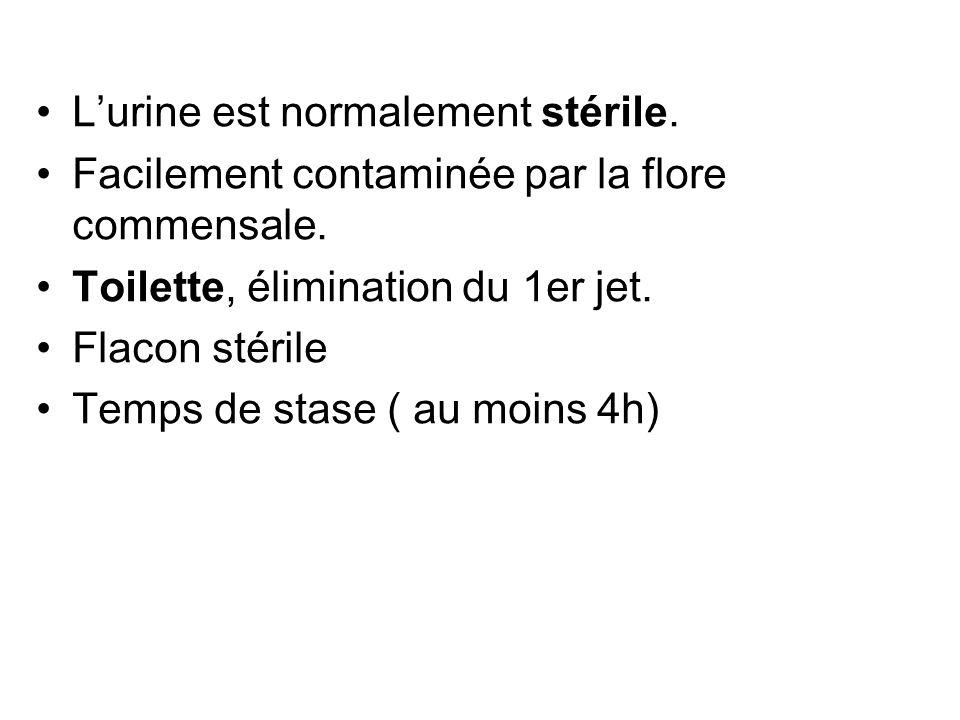 Lurine est normalement stérile. Facilement contaminée par la flore commensale. Toilette, élimination du 1er jet. Flacon stérile Temps de stase ( au mo