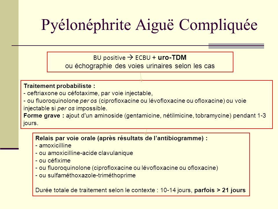 Pyélonéphrite Aiguë Compliquée BU positive ECBU + uro-TDM ou échographie des voies urinaires selon les cas Traitement probabiliste : - ceftriaxone ou