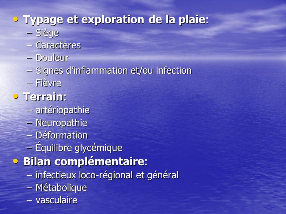 Typage et exploration de la plaie: Typage et exploration de la plaie: –Siège –Caractères –Douleur –Signes dinflammation et/ou infection –Fièvre Terrai