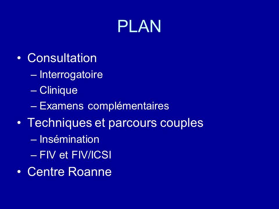 PLAN Consultation –Interrogatoire –Clinique –Examens complémentaires Techniques et parcours couples –Insémination –FIV et FIV/ICSI Centre Roanne