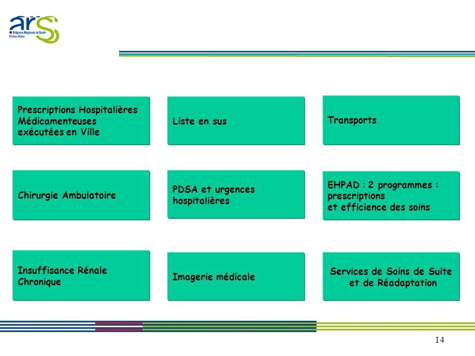 14 Les dix priorités communes 2010-2011 du PRGDR Transports Insuffisance Rénale Chronique Liste en sus Chirurgie Ambulatoire EHPAD : 2 programmes : pr