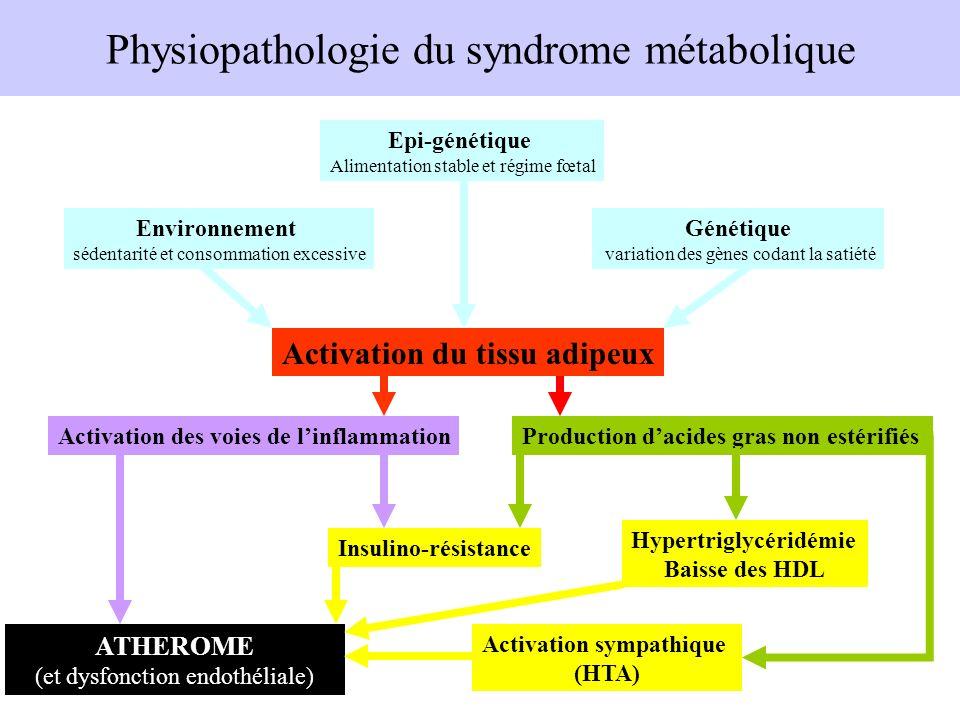 Physiopathologie du syndrome métabolique Activation du tissu adipeux Environnement sédentarité et consommation excessive Génétique variation des gènes
