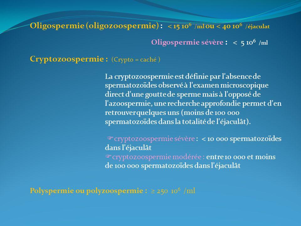 Oligospermie (oligozoospermie) : < 15 10 6 /ml ou < 40 10 6 /éjaculat Oligospermie sévère : < 5 10 6 /ml Cryptozoospermie : (Crypto = caché ) La crypt