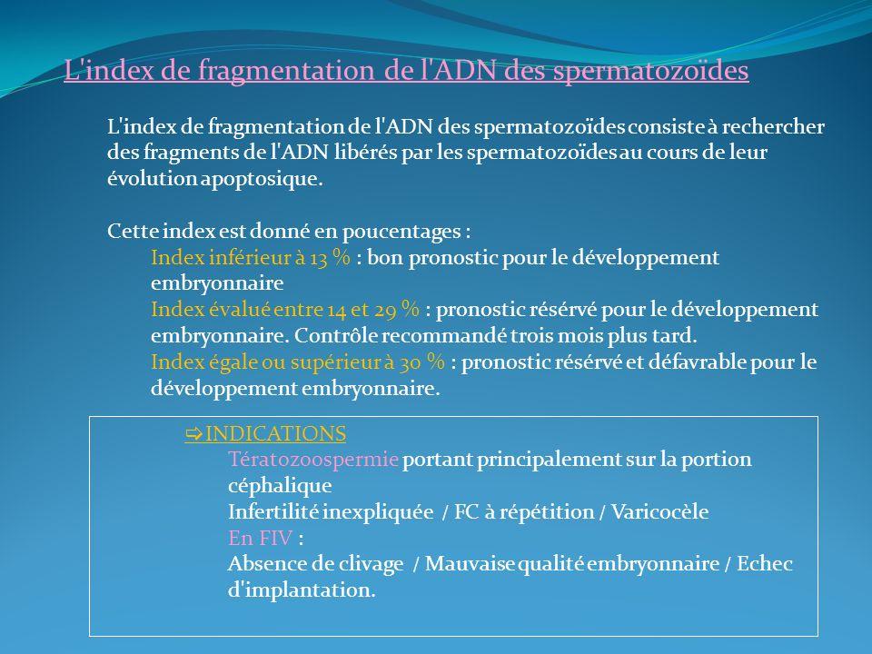 L'index de fragmentation de l'ADN des spermatozoïdes L'index de fragmentation de l'ADN des spermatozoïdes consiste à rechercher des fragments de l'ADN