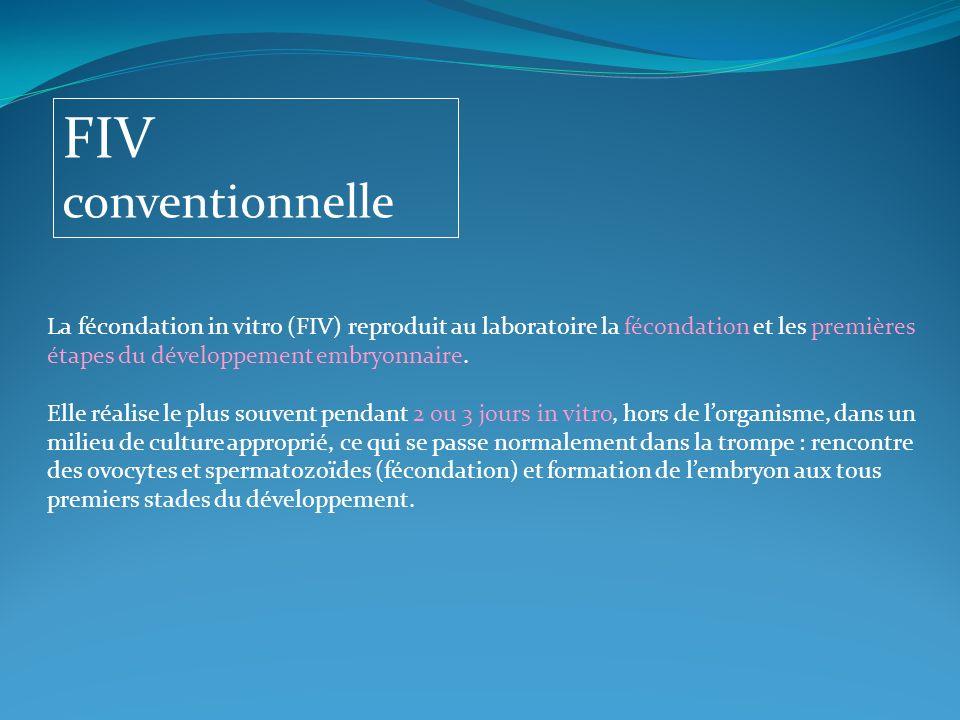 FIV conventionnelle La fécondation in vitro (FIV) reproduit au laboratoire la fécondation et les premières étapes du développement embryonnaire. Elle