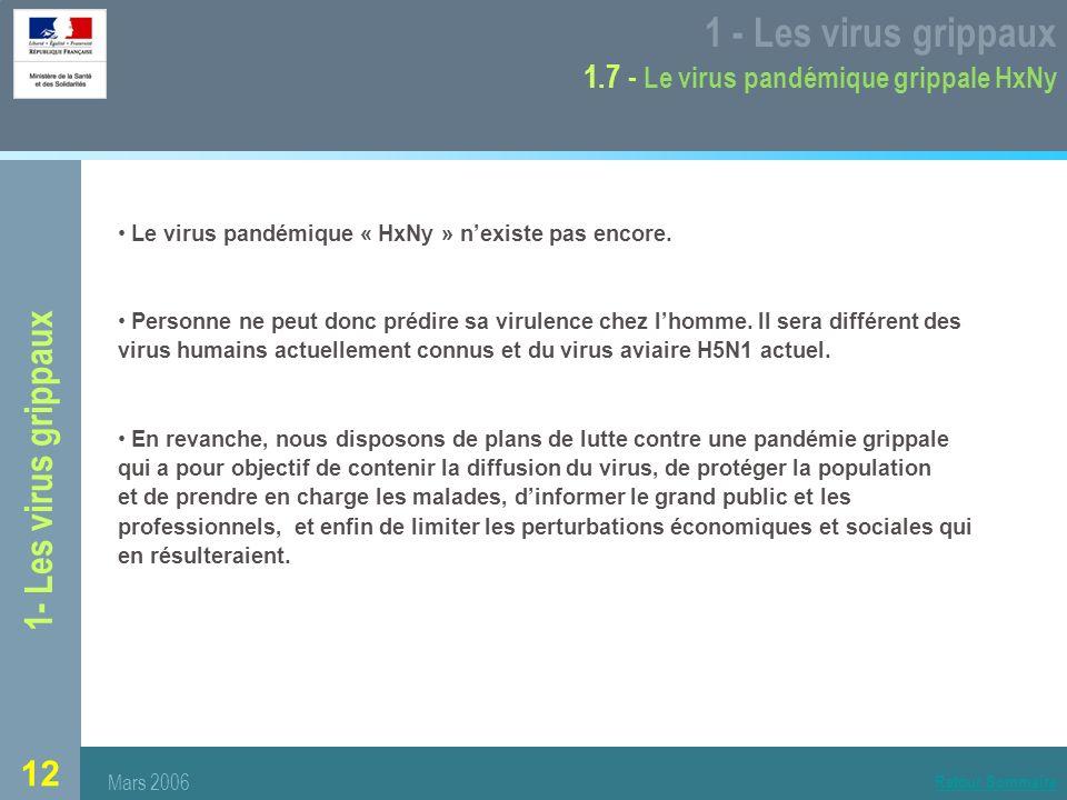 12 1- Les virus grippaux 1 - Les virus grippaux 1.7 - Le virus pandémique grippale HxNy Le virus pandémique « HxNy » nexiste pas encore.