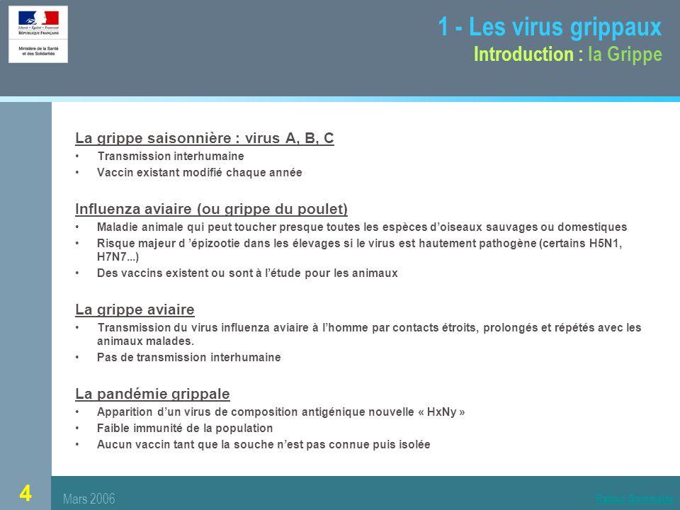 4 La grippe saisonnière : virus A, B, C Transmission interhumaine Vaccin existant modifié chaque année Influenza aviaire (ou grippe du poulet) Maladie animale qui peut toucher presque toutes les espèces doiseaux sauvages ou domestiques Risque majeur d épizootie dans les élevages si le virus est hautement pathogène (certains H5N1, H7N7...) Des vaccins existent ou sont à létude pour les animaux La grippe aviaire Transmission du virus influenza aviaire à lhomme par contacts étroits, prolongés et répétés avec les animaux malades.