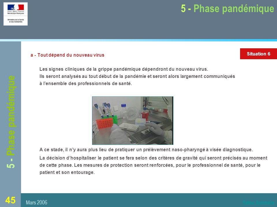 45 5 - Phase pandémique a - Tout dépend du nouveau virus Les signes cliniques de la grippe pandémique dépendront du nouveau virus.