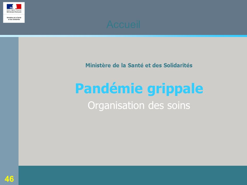46 Ministère de la Santé et des Solidarités Pandémie grippale Organisation des soins Accueil