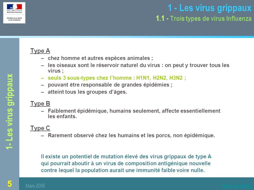 5 1- Les virus grippaux 1 - Les virus grippaux 1.1 - Trois types de virus Influenza Type A –chez homme et autres espèces animales ; –les oiseaux sont le réservoir naturel du virus : on peut y trouver tous les virus ; –seuls 3 sous-types chez lhomme : H1N1, H2N2, H3N2 ; –pouvant être responsable de grandes épidémies ; –atteint tous les groupes dâges.