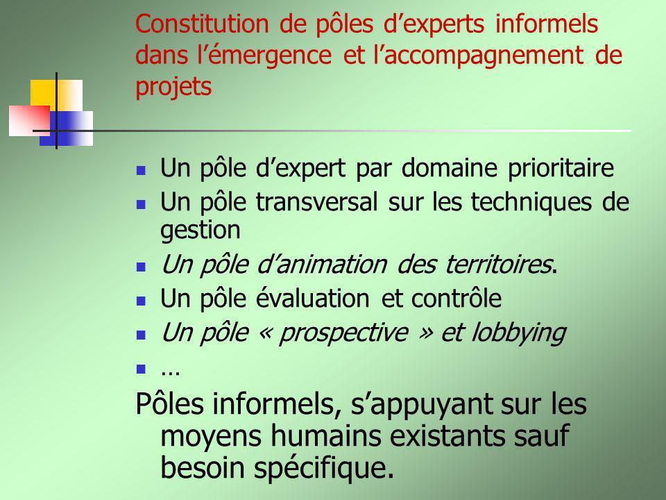Constitution de pôles dexperts informels dans lémergence et laccompagnement de projets Un pôle dexpert par domaine prioritaire Un pôle transversal sur